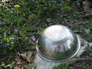 Frank | miles' bowl, cotton's stone | RI