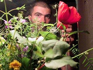 Ricardo Gonzo | flowers mirror | Corsica