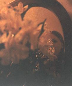 Rei | lilies | my room
