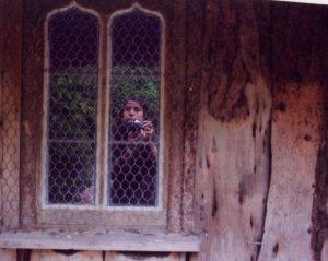 agnese | bear hut | Killerton graden, Devon, UK