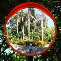 Tracey | In The Gardens | Sydney Australia