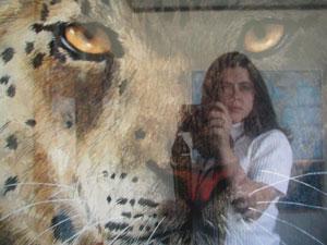 Amy Sage | Snow Leopard | Austin, TX