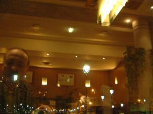 George Por | Within & Without | Restaurant Hotel Novotel Gare de Lyon, Paris