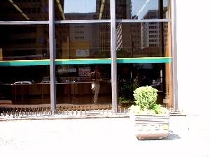 Rodrigo Loyola | Waiting for... | S�o Paulo, Brazil.