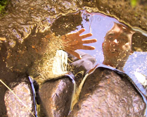 Pep Puertas | hi, pond | benasque - spain