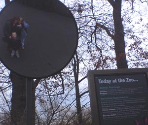 Christine Geiger | At the Bronx Zoo | Bronx Zoo, NY