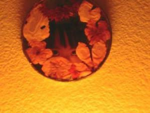 flora | sister's mirror