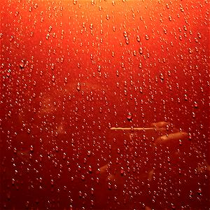 Andy Mac | Metallic Rain | Hampshire, England