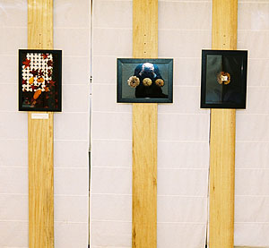 Balthusar Alvarez | At the exhibition | Librer�a Cerventes, Oviedo, Northern Spain