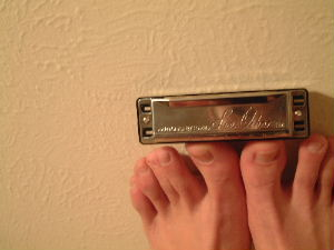 Stephanie Joens | my new harmonica | denver, co