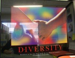 Amanda Davis | Diversity #1 | Sydney, Australia