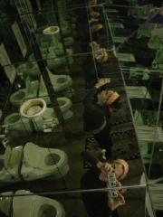 carrie pierce | david's room of mirrors | david's house