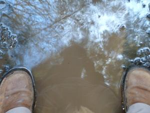 Philip Ashlock | Standing on Myself | Whistle Lake, Anacortes, WA, 98221