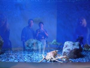 Mary Cheryl | Ghosts | Aquarium of the Pacific (Long Beach, CA)