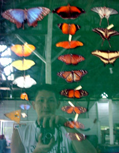 Vieja, Alajuela, Costa Rica