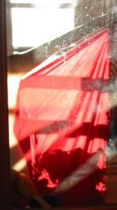 Nori Heikkinen | red lapa silhouette