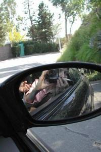 ana | rearview | hollywood, ca, usa