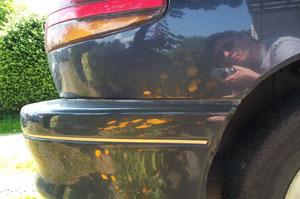 Phil Scroggs   Sunny Summer in Seattle   Seattle, WA