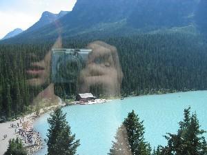 Charlie | Watery Reflections | Lake Louise, Alberta