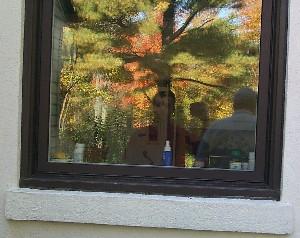 Chris Nolan | Autumn | Missasauga, ON