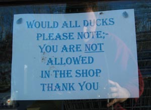 rod | Ducks denied | Ranworth, Norfolk Broads