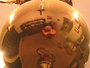 kelly | brassy girl | my dining room - Illinois