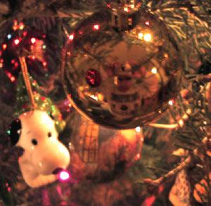 Brad Farris   Christmas Tree   Chicago, IL