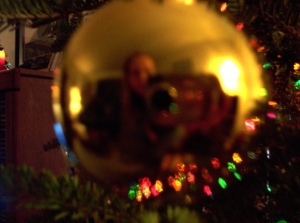 Lee | Plastic Christmas Bulb | Rochester, Ny