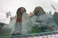 mary   rain on my parade