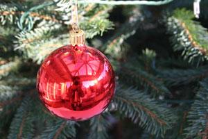 Florian Fink | Christmas