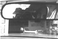 jacki Koch | Rearview mirror