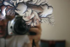 chris   old mirror   brooklyn