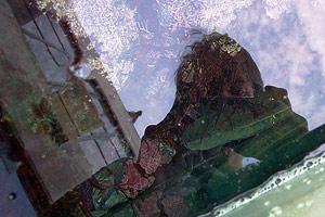 Andy Purviance | Eel Reflection | Monteray Bay Acquarium, California