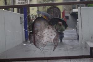 Raul Navarro | Hole | Guadalajara, M�xico