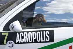 Tim Auld | Acropolis Rally | Lamia, Greece