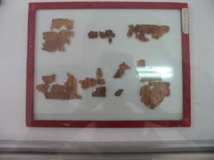 Bethany Hartman | Dead Sea Scrolls | Amman, Jordan