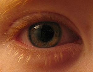 Josh Mobley | Apple of my eye | home