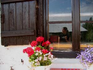 Audrey J | Saying it with flowers | Blaringhem, France