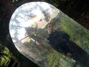 Alvaro R.D.S | d�fract� et contre un arbre! | Gen�ve