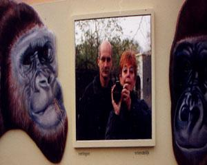Jenny Cockshull | Monkeing around | Rotterdam Blijdorp Zoo the Netherlands