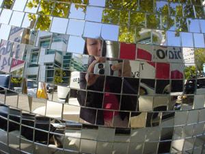 Lily   Mirror Ball   seattle, washington, usa