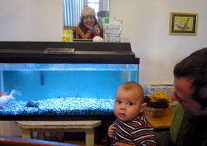 Alejandra Valera de Barrett | Fishes at school | Chicago, Illinois