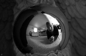 Sean Stearns | Self Reflection | Maryland