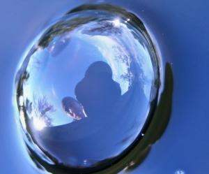 Justin Maylone | Mirror Sphere | Redmond, Wa.