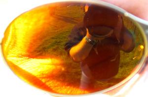 Fergus Duncan | Oakley Eye | Knockhill Racing Circuit, Fife, Scotland