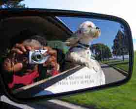 Gilda Snowden | OBJECTS IN MIRROR ARE CLOSER THAN THEY APPEAR
