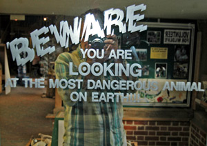 Barry David | Beware | Kent