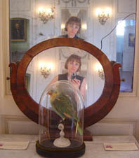 Sandrina Rosseel | Flaubert's parrot  Lulu | The Gustave Flaubert museum is in Rouen France