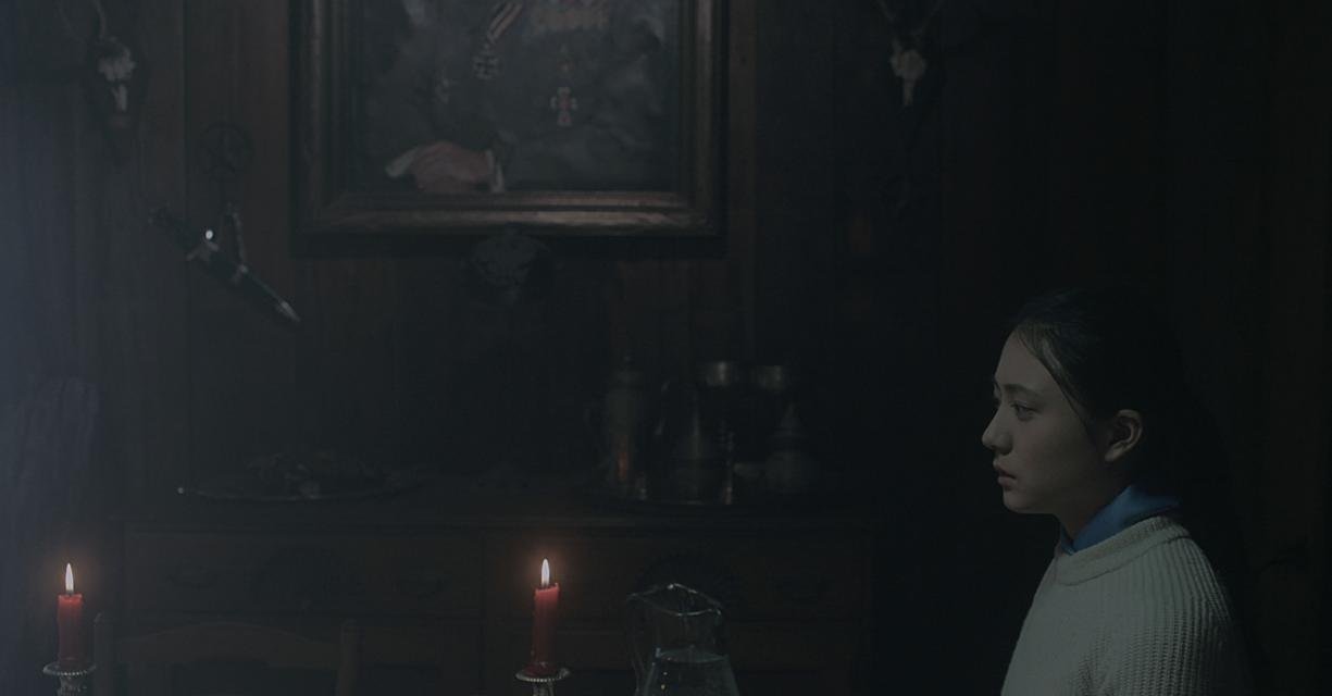 Mykonos Biennale 2015 - Film Festival -  THE LOYALIST - screen shot