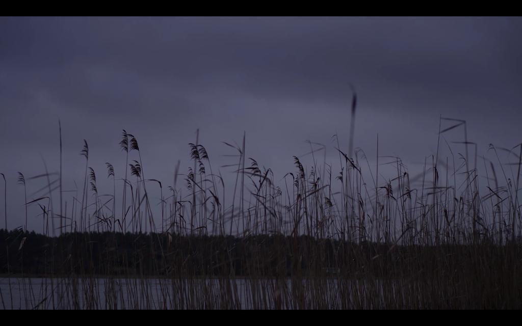 Mykonos Biennale 2015 - Film Festival -  Schattenseele - screen shot